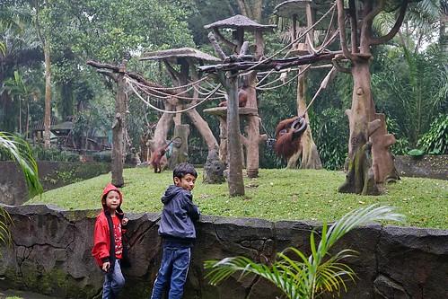 Taman Safari Prigen | by yoannafayza