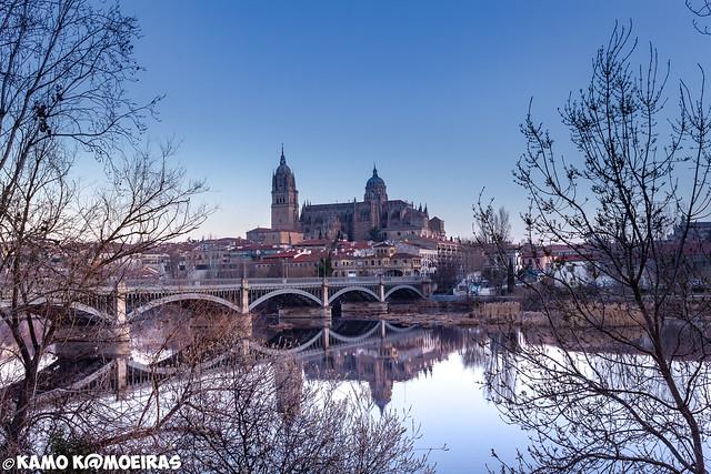 catedral,puente enrique estevan