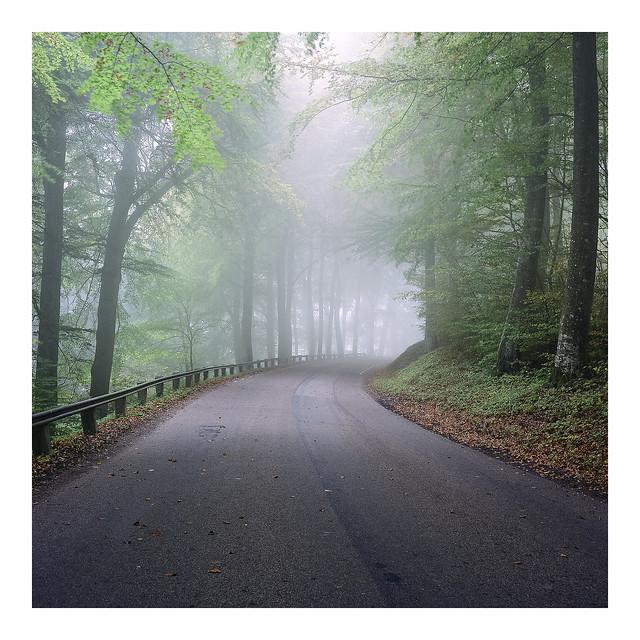 Hazy Road II - Fuji Reala 100 exp*