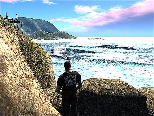 Maoz - Mother Ocean Missed