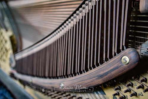 Steinway | by niseag03