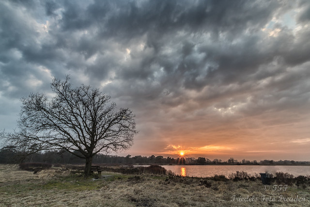 Yesterday evening mood at Wollingster Lake
