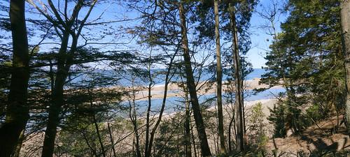 lake lakeshore lakemichigan trees ice iceberg