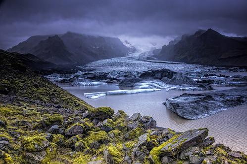A fresh start   by Wim van de Meerendonk, loving nature