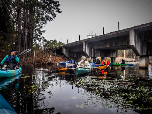 Old Santee Canal-53 | by RandomConnections