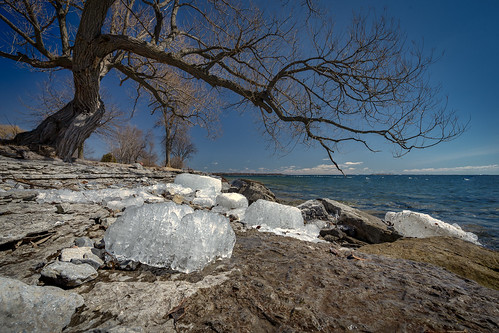 amherstview cans2s 1635f4 alpha sony season spring limestone shore lake water lakeontario ygk kingston loyalist ontario canada ca