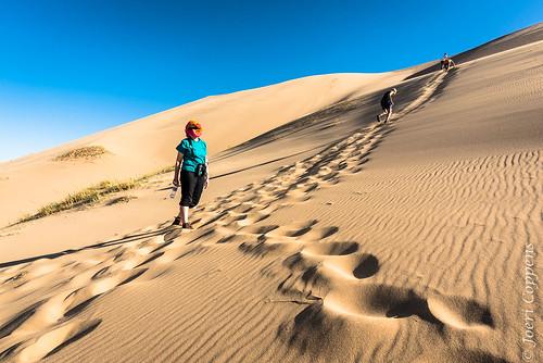 khongorynels gobi desert mongolia gobidesert nomad nomadic travel tourism asia arid dry sand dune sanddune gobigurvansaikhannationalpark tourist khongoryn nature nikon d750 nikond750 20mm