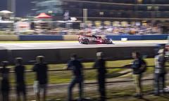 Fernando Alonso - 1000 Miles of Sebring
