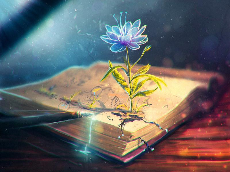 Обои цветок, абстракция, книга, перо картинки на рабочий стол, фото скачать бесплатно
