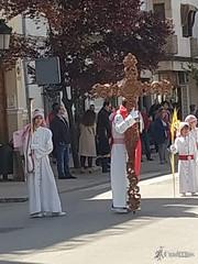 procesion-domingo-de-ramos-tomelloso-la-borriquilla-5