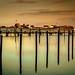Graswarder über leerem Yachthafen by pyrolim