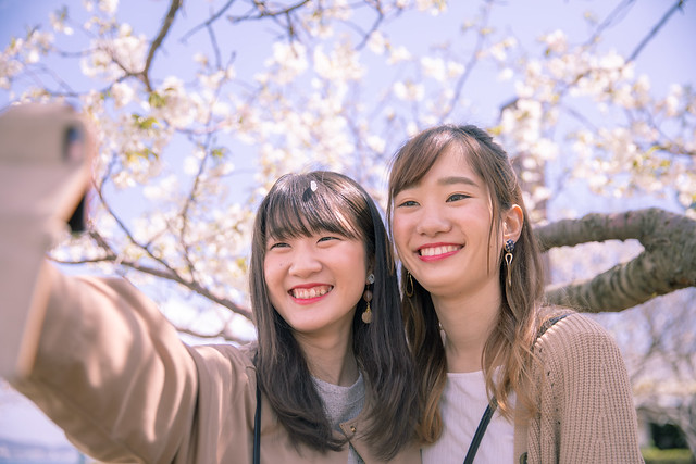 Happy female friends taking selfie picture under cherry blossoms