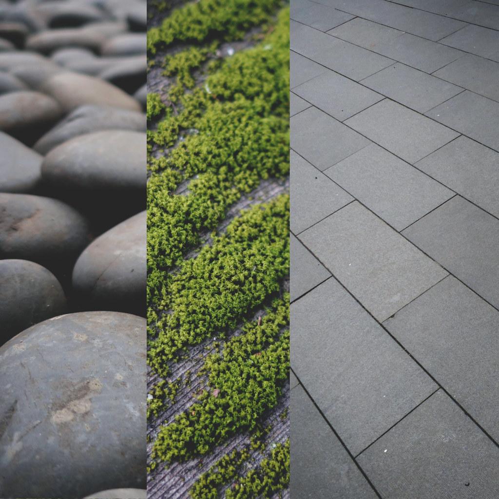 Day 73 portland japanese garden texture study - Portland japanese garden free day ...
