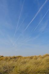 Knokke  Paragliding