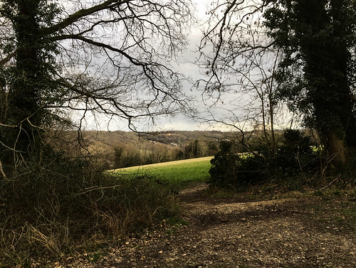 Day 072 chalk and flint footpath on Kenley Common | by gamulryan