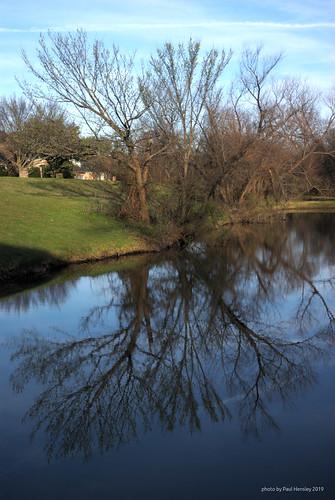 pond tree reflection supertakumar3535