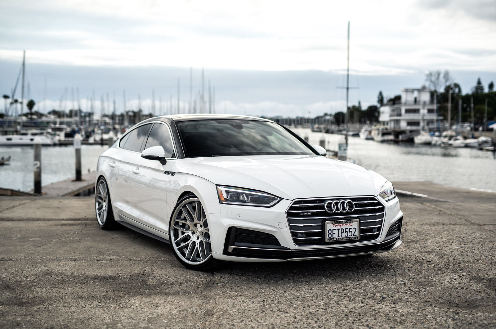 2019_Audi_S5_White_With_BD27 (4)