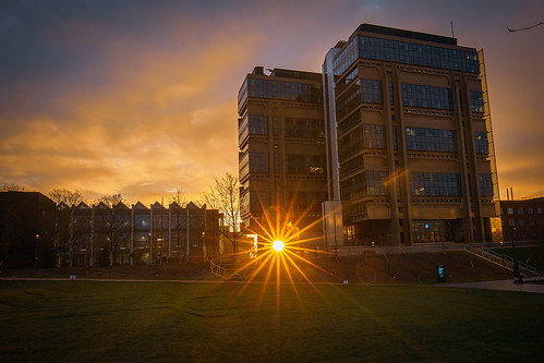 sunburst greenheart building architecture universityofbirmingham muirheadtower alanwaltersbuilding sunrise
