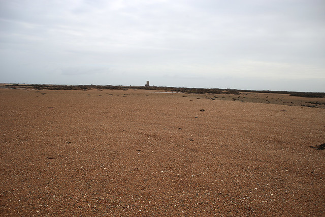 South East Jersey RAMSAR Site
