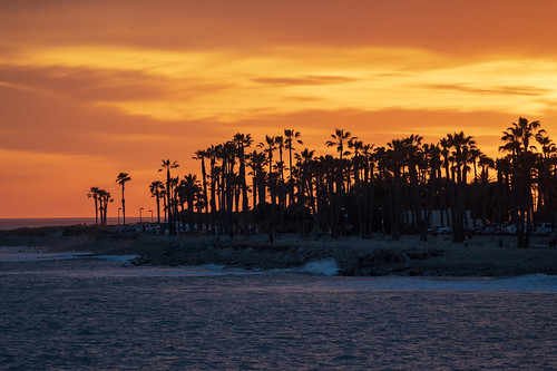 sunset ventura trees palmtrees silhouette landscape ocean beach water california socal clouds venturacounty