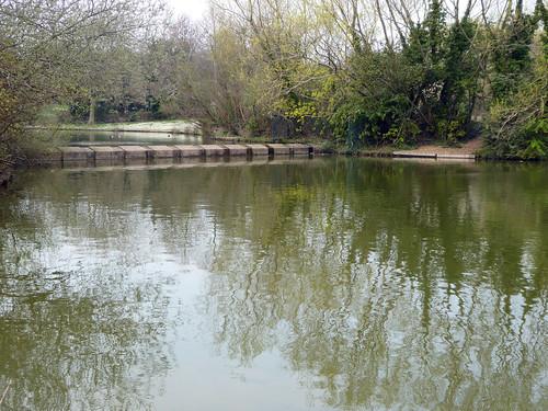 Leegomery Pools
