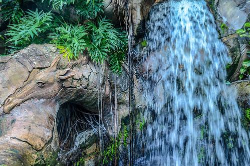 Giraffe waterfall Tree of Life AK | by gamecrew7