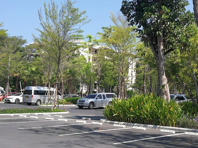 <p>タートルビレッジの後ろ側がマイカオビーチの駐車場です。</p>