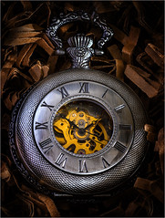 The Pocket watch ...