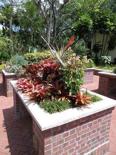Harry P Leu Gardens. Orlando FL.