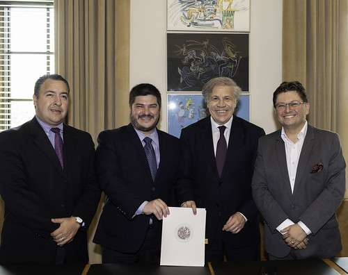 OAS and Regional Alliance for Free Expression and Information Will Work Together in the Defense of Fundamental Rights