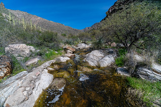 1903 Flowing water in Pima Canyon | by c.miles