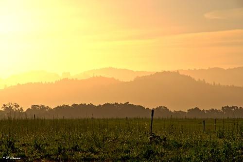 kenwood sonoma california