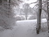 Snow at last by friedel48