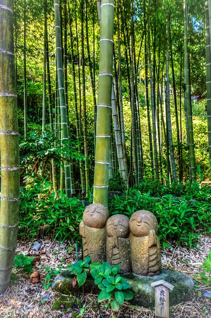 長谷寺。 鎌倉市。竹の間。