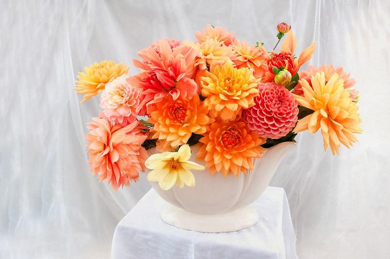 Обои цветы, яркие, букет, ткань, белая, ваза, натюрморт, оранжевые, светлый фон, столик, разные, композиция, георгины, горшрк картинки на рабочий стол, раздел цветы - скачать