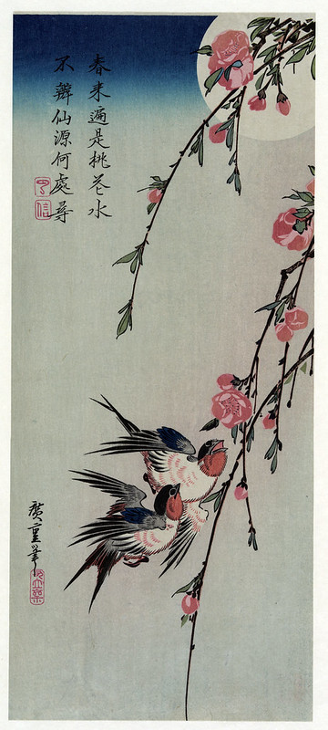 Moon, Swallows and Peach Blossoms