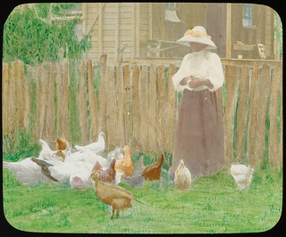 Woman feeding chickens, Alton Downs, Queensland, ca. 1910
