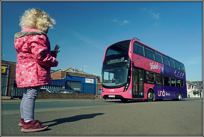 Jasmine likes to wave at the pink buses...............