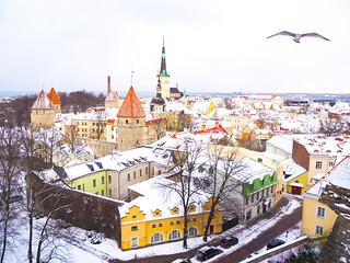 Päiväksi Tallinnaan | by helirontu