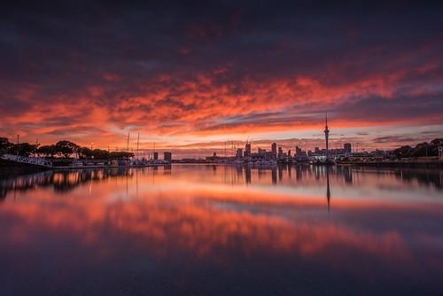 sunrise colour lit oink glow reflection cityscape landscape harbour framing