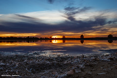 zonsondergang scharreveld