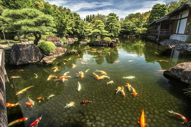 Koko-en Garden, Himeji - Hyōgo Prefecture (Japan)