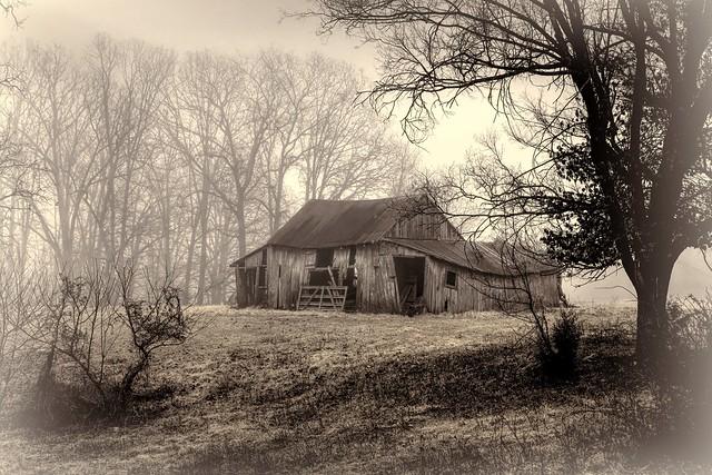 ...Mountain View, Missouri...