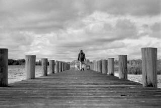 Dock Buddies | by macromary