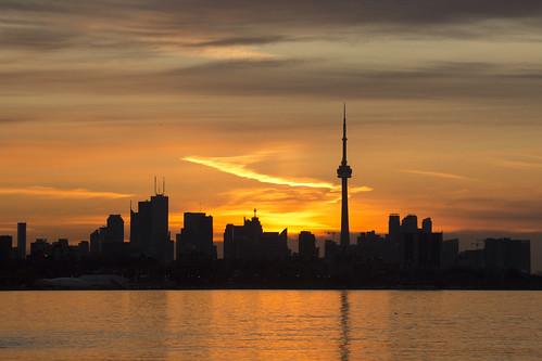 Morning Glow | by CJ Burnell