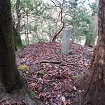 青き鬼の霊木と、比叡山の水神たる酒天童子