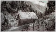 Winter in der Schweiz / Winter in Switzerland