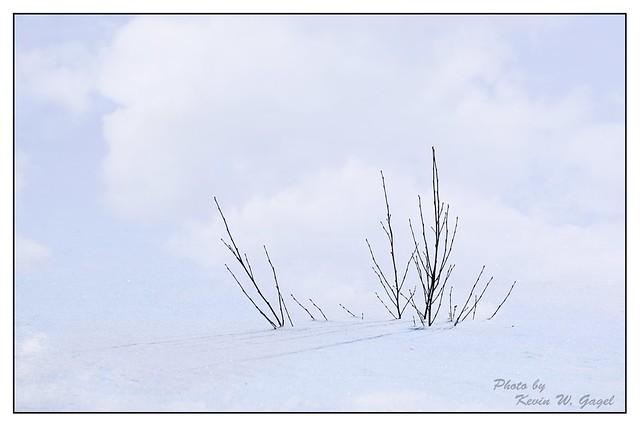 Eskers_Provincial_Park_09