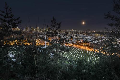night suburbs suresnes montvalérien cimetery trees splendid view lights sizuneye nikond750 moon tamron2470mmf28 tamron nikon d750 paris france iledefrance