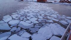 Finnsnes, Norway, Harbour Ice